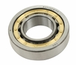 OUTER IRS AXLE BEARING