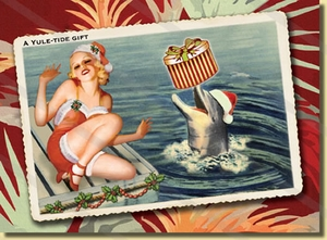 Dolphin Surprise Christmas Cards