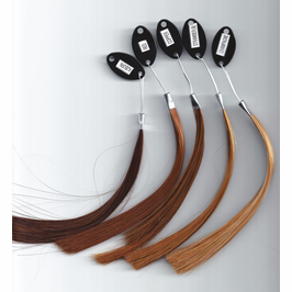 Determine Desired Shade With A Fully Refundable Hair Ring