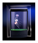 Fascinations <br />Magic Jellyfish