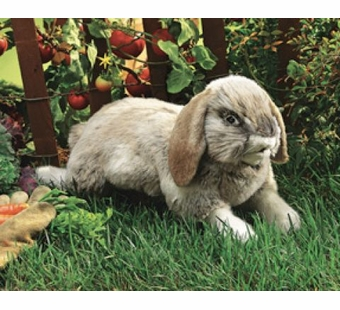 Folkmanis Puppets <br />Holland Lop Rabbit Puppet