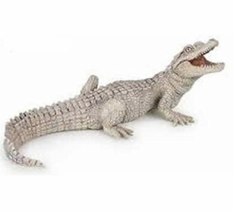 Papo <br />Baby White Crocodile #39393