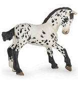 Papo <br />Black Appaloosa Foal #51540