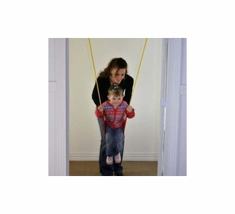 Playaway Toy Company <br />Strap Swing