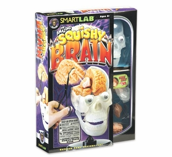 SmartLab Toys <br />Squishy Brain Science Kit