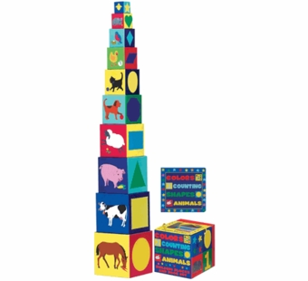 WJ Fantasy <br />Colors, Counting, Shapes and Animals Building Blocks & Book Set