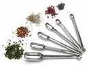 Endurance Set of 6 Spice Spoons