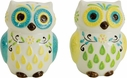 Floral Owl Salt & Pepper Shakers