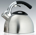 Saturn Stainless Steel Tea Kettle