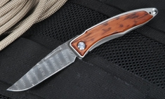 Chris Reeve Mnandi - Snakewood and Ladder Damascus Folder