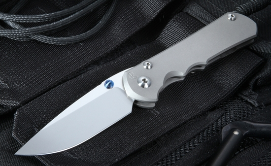 Chris Reeve Sebenza 25 Folding Knife with S35VN Steel