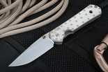 Chris Reeve Small Sebenza Fastener Folding Knife