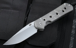 Chris Reeve Large Sebenza 21 CGG Riddled