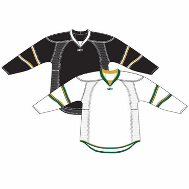 RBK 25P00 Junior NHL Edge Gamewear Hockey Jersey - Dallas Stars