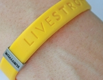 LIVESTRONG Series SURVIVOR Slim Badge