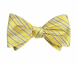 LIVESTRONG Silk Bow Tie - Yellow/Grey