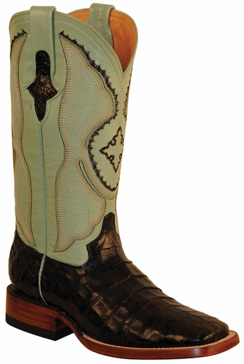 Ferrini Women's Caiman Belly 12