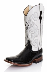 "Ferrini Women's Gator Belly Print 12"" Square Toe Boots - Black"