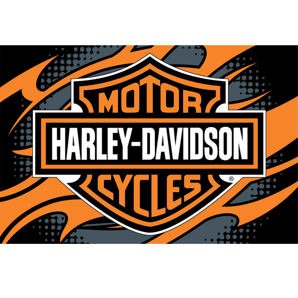 harley davidson rug - home design ideas and pictures