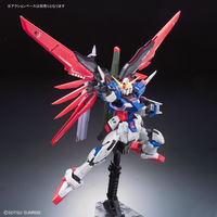 Real Grade:  Destiny Gundam RG Model Kit 1/144 Scale #11 - SOLD OUT