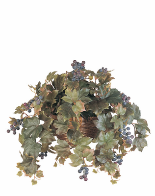 All Season Grape Leaf Hanging Basket