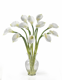 Calla Lilly Liquid Illusion - Click to enlarge