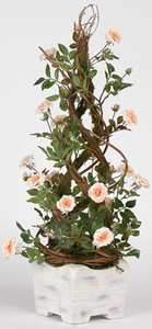 Cone Topiary w/ Champagne Rose Blossoms