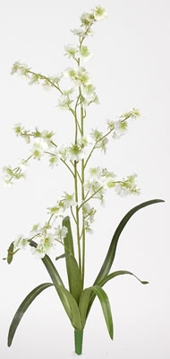 Dancing Lady Silk Orchid Flower (6 Stems) - Click to enlarge