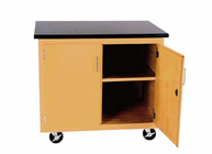 Enclosed Mobile Demonstration Cabinet