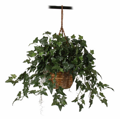 English Ivy Hanging Basket Silk Plant