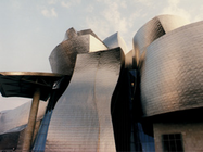 Guggenheim Museum Bilbao  Video (VHS/DVD)
