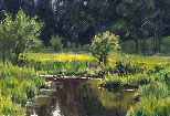 Ian Roberts Art Instruction ( DVD): Plein Air Painting (1 hour, Oil)
