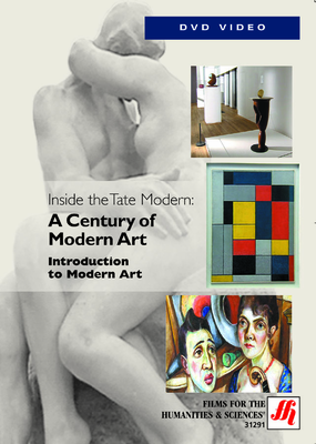 Introduction to Modern Art Video  (DVD)