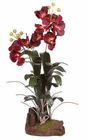 Large Vanda w/Root Base Silk Orchid Plant