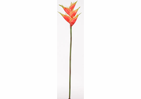 Lobster Heliconia Silk Flower - Red (12 Stems)