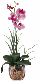 Mini Phalaenopsis Liquid Illusion Silk Orchid Plant - Click to enlarge
