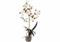 Oncidium Liquid Illusion Silk Orchid Plant