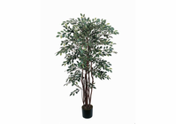 Ruscus Silk Tree 4 ft
