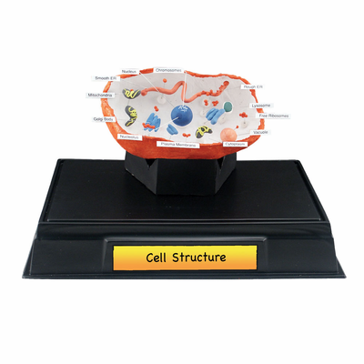 Scene-A-Rama� Cell Structure Classroom Pack - Click to enlarge