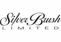 Silver Brush Sets