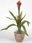 Single Flame Bromeliad Silk Plant - Red
