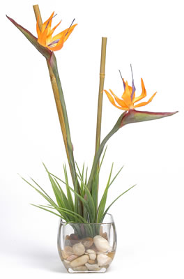 Tropical Bird of Paradise Liquid Illusion Silk Plant