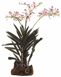 Vanda w/Root Base Silk Orchid Plant - Click to enlarge