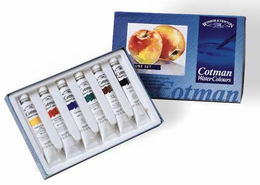 W&N Cotman Water Color PAINT 8ml 6/st