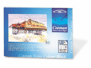 W&N Cotman Water Color PAPER 9 X 12 in (140 lbs. 10 sheets)