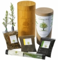 Living Urn Tree Planting System Biodegradable Cremation Urn