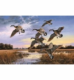 Canadian Geese in Flight Mat