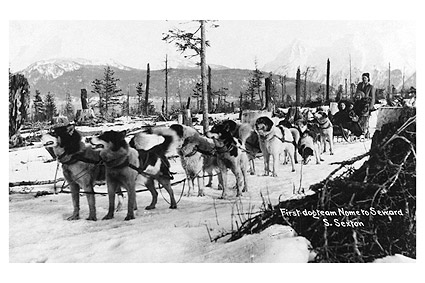 1st Dog Sled Team To Go From Nome to Seward Photo Print