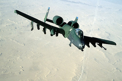 A-10 A / A-10 Thunderbolt II Warthog Photo Print