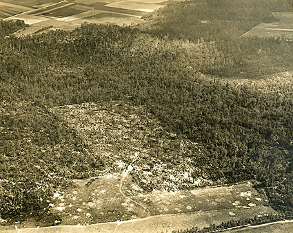 Aerial View of Belleau Woods in France WWI Photo Print